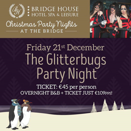 The Glitterbugs Party Night
