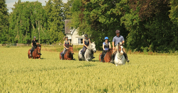 Clonmore Riding School - Visit Offaly