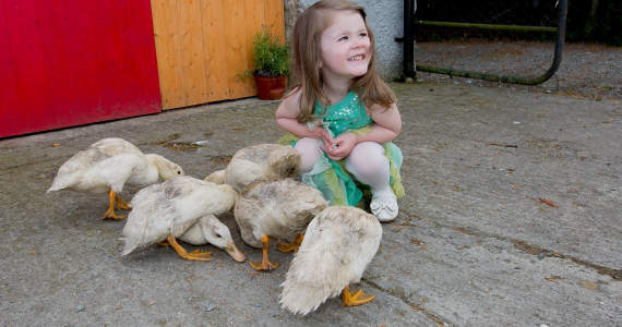 Ducks & Little Girl