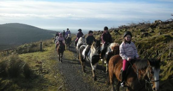 Birr Equestrian Centre Mountain Trail