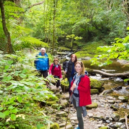 Walking in the Slieve Bloom