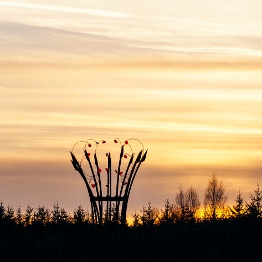Lough Boora Sculpture Crown