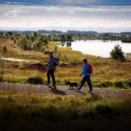 People out walking in Lough Boora